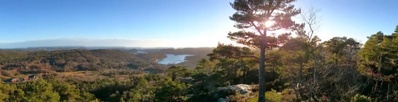 Utsikt fra Steinsåsen, Steindal